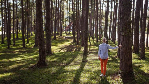 person in orange pants standing under tree during daytime - Foto: Kaipov/unsplash